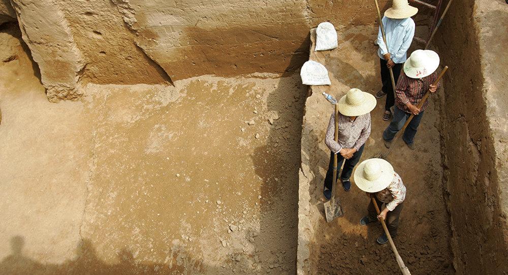 中國發現侏羅紀早期大型恐龍的足跡