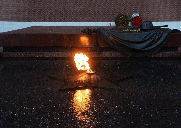 埃及總統在莫斯科向無名烈士墓獻花圈