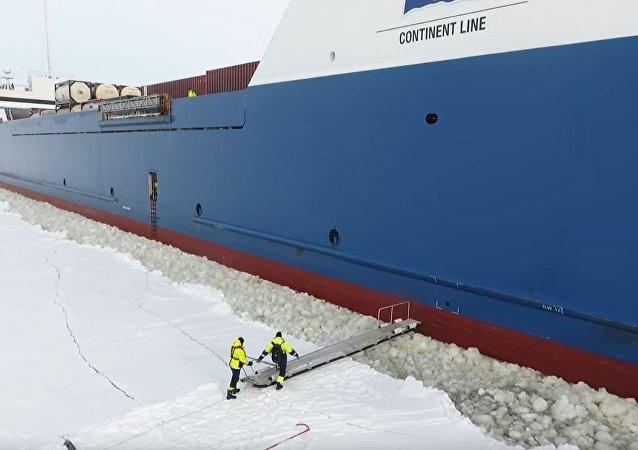 芬兰引航员用危险方法爬上舰船 (视频)