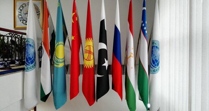 上合组织:个别国家或国家集团单方面不受限制地发展反导系统损害国际安全