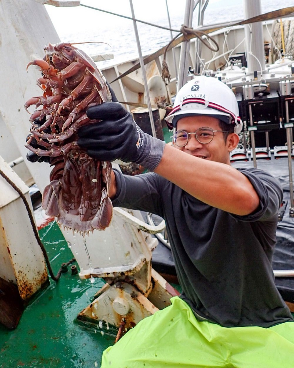 研究人员在印度洋洋底发现巨型深海蟑螂