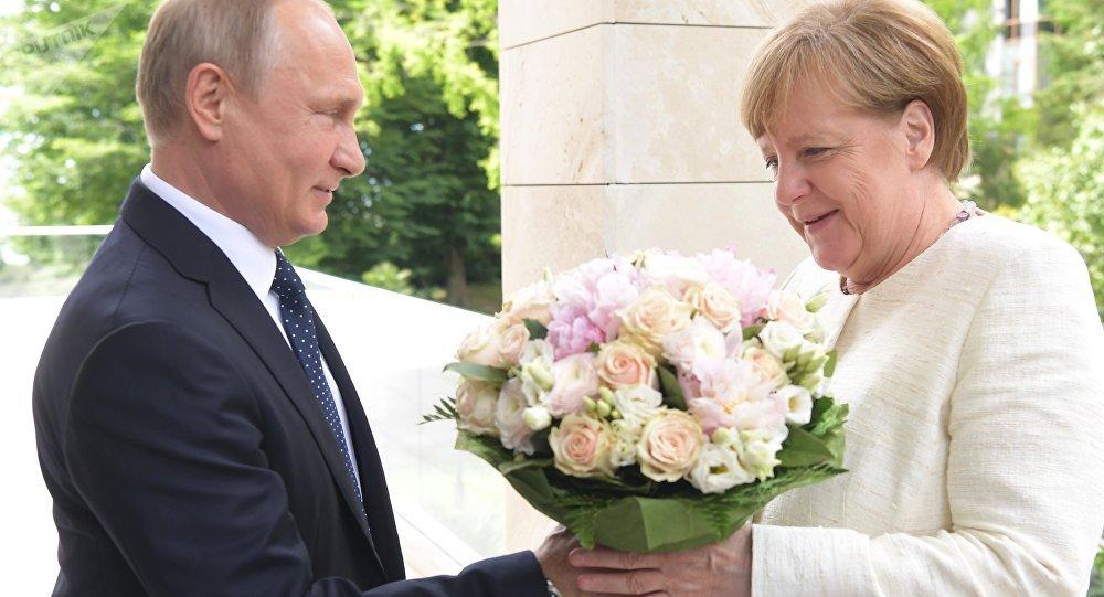 """《图片报》:给默克尔的花束是""""侮辱"""""""