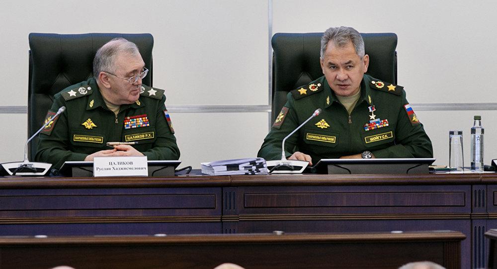 俄国防部长谢尔盖·绍伊古与俄国防部第一副部长鲁斯兰∙察利科夫