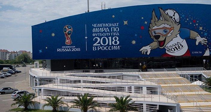 俄白外长将于下周签署世界杯期间签证互认协议