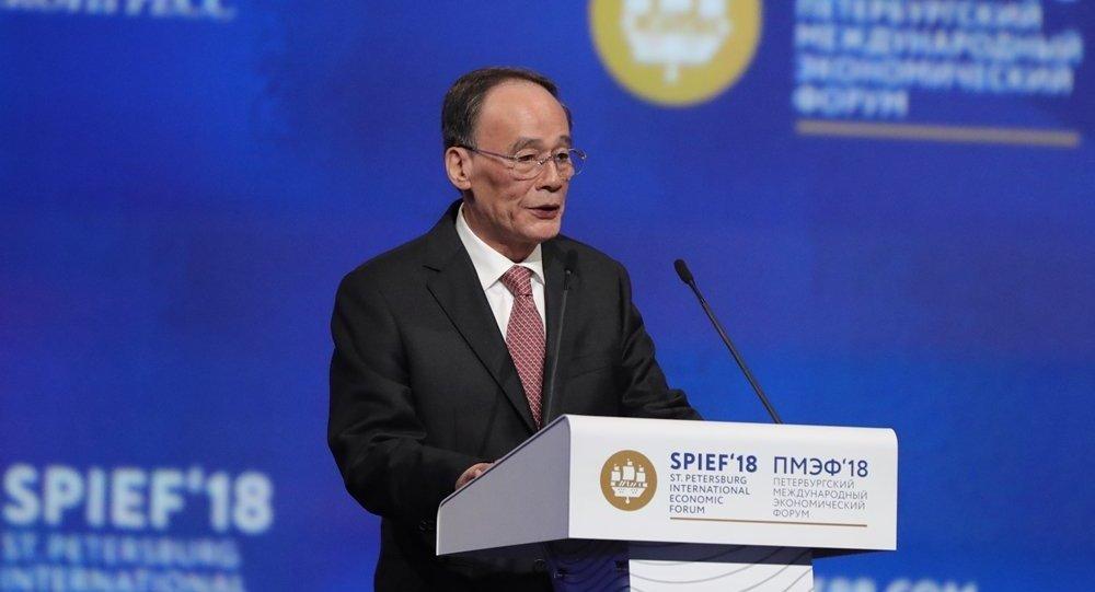 中国国家副主席王岐山在圣彼得堡国际经济论坛全体会议上