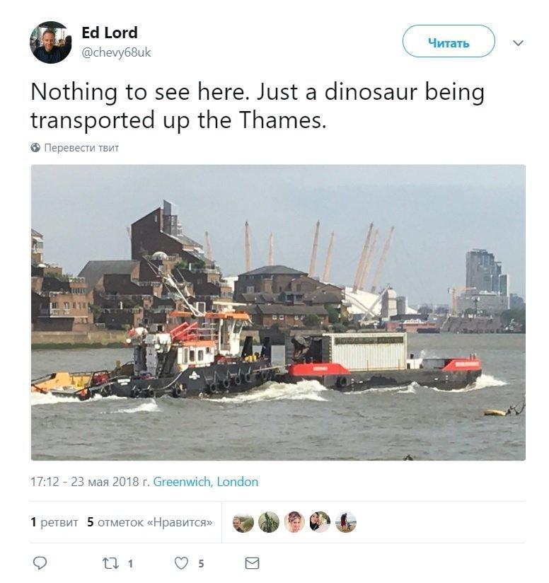 英国百姓对漂在泰晤士运河上的恐龙并不惊讶