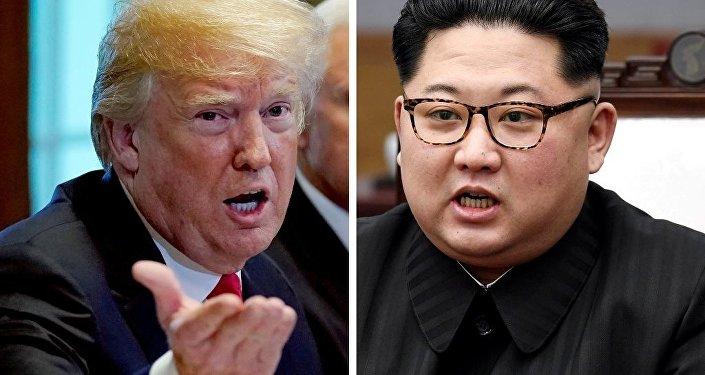 特朗普:美国正与朝鲜就举行首脑会晤展开富有成效的会谈