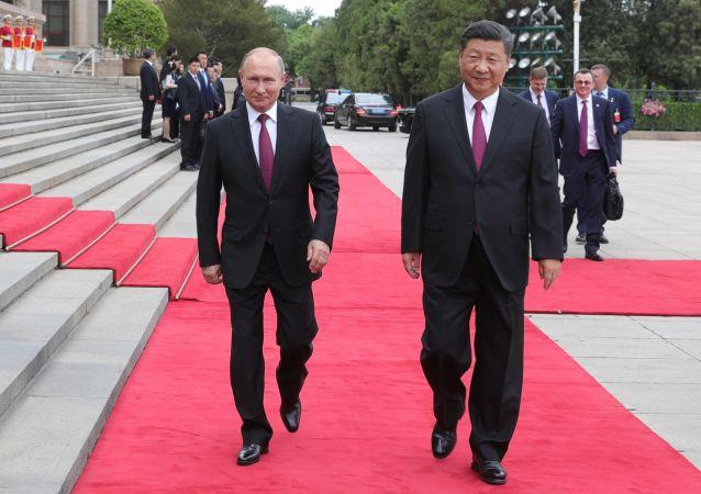 克宫:普京与习近平可能将讨论朝鲜局势及与美关系