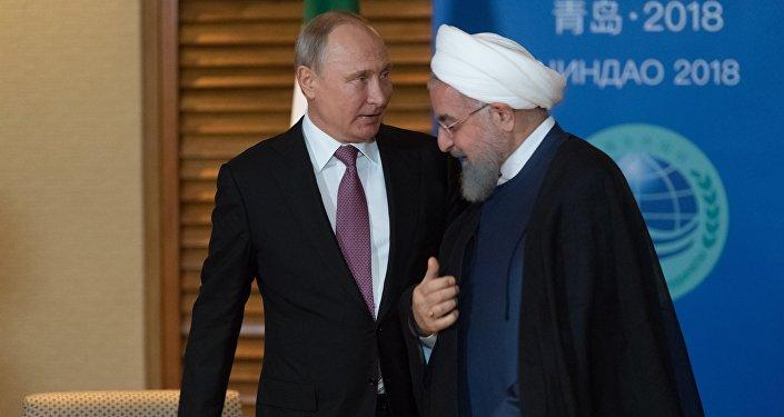 普京與魯哈尼會晤期間