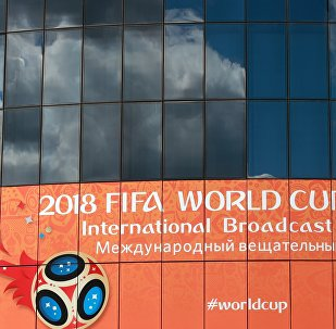 彭博社:抵制 2018年俄罗斯世界杯行动没有成功