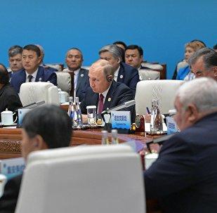普京:俄烏領導人電話會談的倡議由波羅申科發起,這表現出瞭解決問題的願望