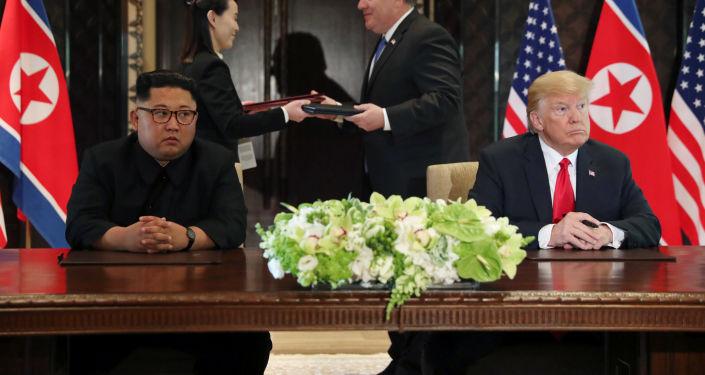 美专家:美朝峰会的成果反映俄中双暂停建议