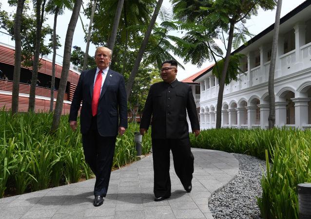 專家:朝美首腦會談為今後朝鮮半島無核化提供機制保障
