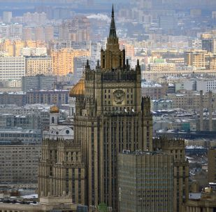 中非共和国有175名俄罗斯教官在工作