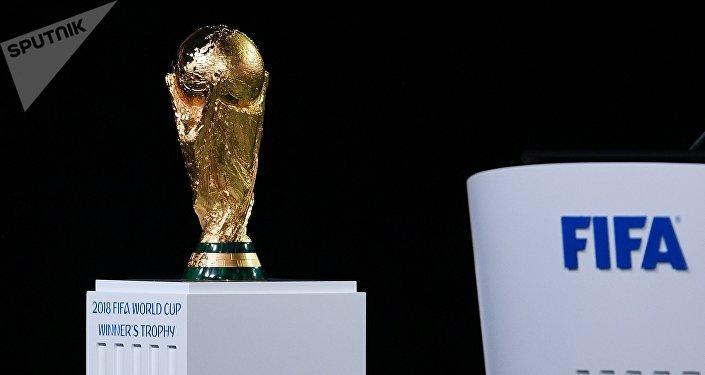 20多位國家元首將出席俄羅斯世界杯揭幕戰