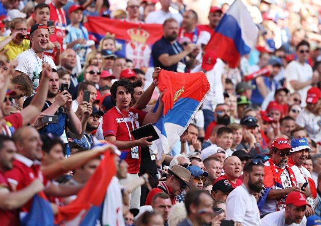 塞尔维亚球迷