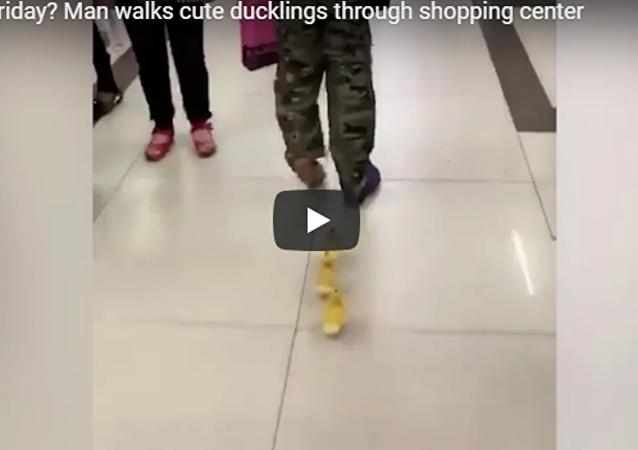 男子商场遛鸭子