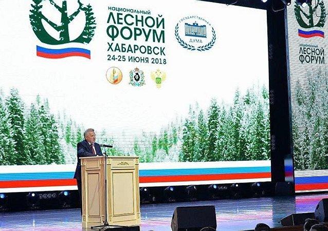 哈巴羅夫斯克邊疆區行政長官維亞切斯拉夫•什波爾特出席俄羅斯國家林業論壇第三階段開幕式