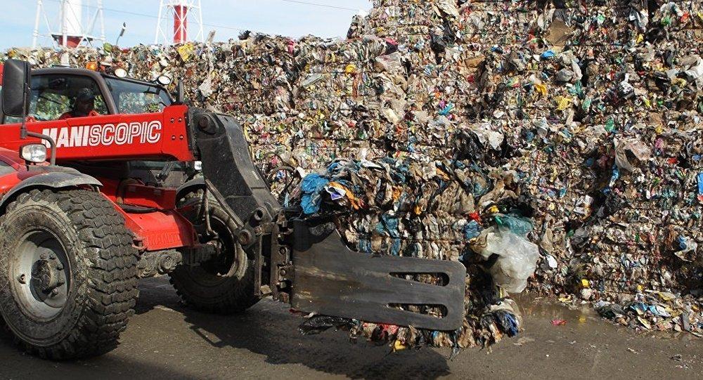 日本公司計劃在俄濱海邊疆區引進生物廢料處理技術