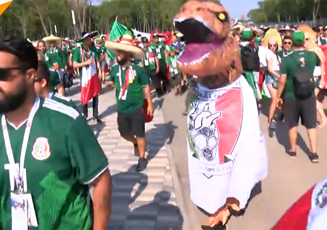 萨马拉市中心举行2018世界杯巴西狂欢节