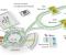 「尼卡」(NICA ,Nuclotron-based Ion Collider facility)對撞機粒子加速器是一個綜合體,借助它可以研究構成宇宙的物質性質。  圖片:在建中的「尼卡」對撞機粒子加速器綜合體示意圖