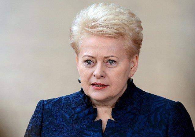 """立陶宛总统呼吁在潜艇上安装美国""""爱国者""""导弹系统"""