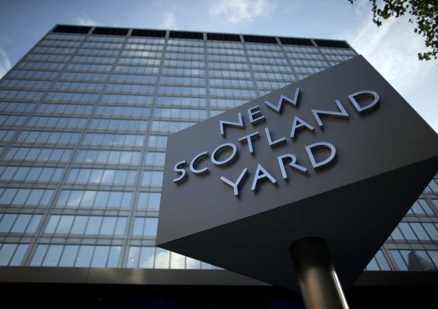 伦敦警方寻找失窃小猫近两月并将其归还主人
