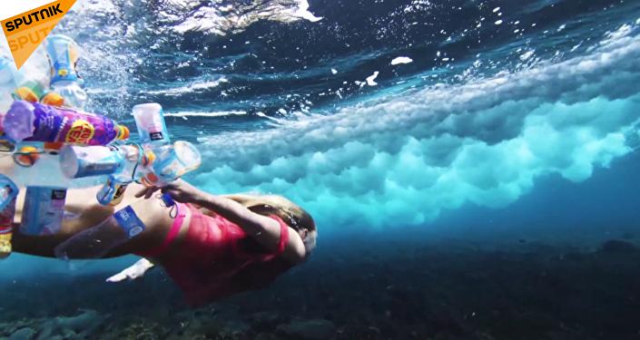 海洋里鱼多还是塑料垃圾多?
