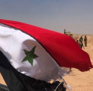 敘利亞政府軍在德拉市升起國旗