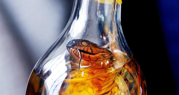 中國女子網購毒蛇欲制蛇酒  結果被蛇咬後中毒昏迷