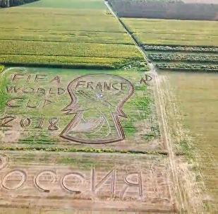"""意大利艺术家用拖拉机 """"画出""""世界杯图案"""