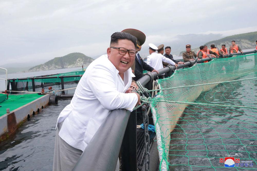 朝鲜领导人金正恩在视察养鱼场。