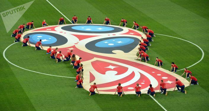 绝佳理由:俄罗斯在世界杯期间与哪国在什么领域达成了协议