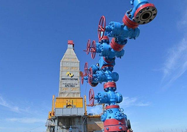 中國能源局:中國首船亞馬爾液化天然氣交付中國石油