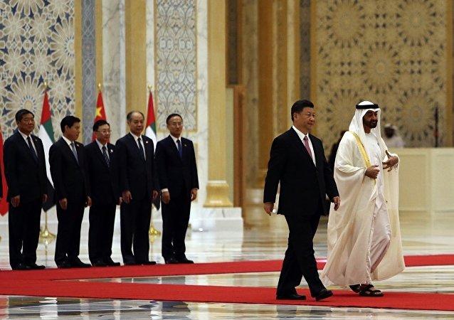 中國和阿聯酋將鞏固合作打擊恐怖主義和網絡犯罪