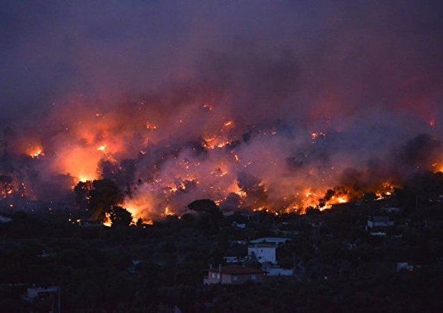 暂无中国公民在希腊严重山林火灾中伤亡的消息