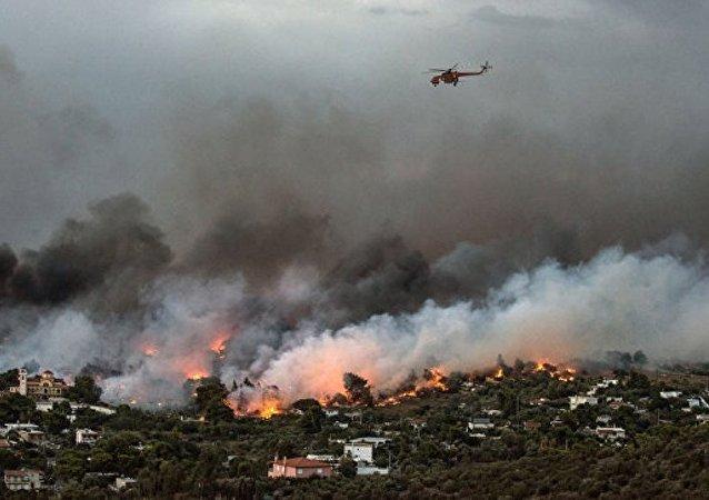 希腊森林火灾遇难人数增至74人