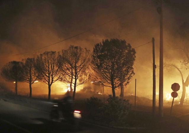 雅典郊區發生重大森林火災 警方正在疏散居民