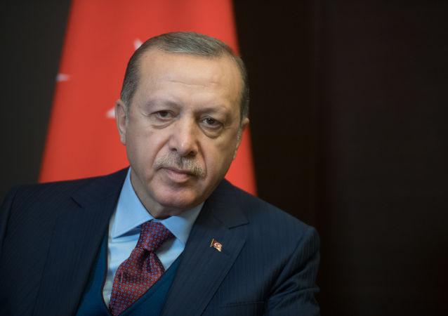 土耳其總統雷傑普•塔依普•埃爾多安