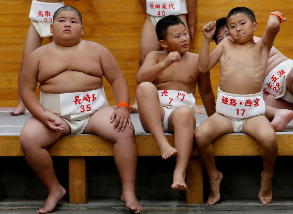 日本小学生相扑比赛