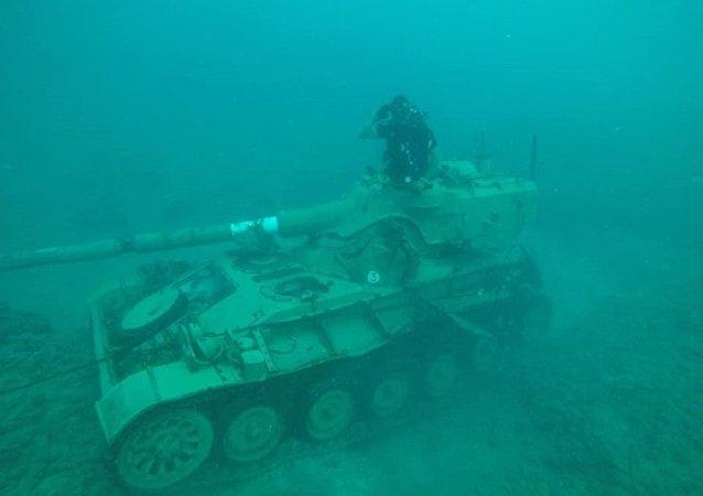 黎巴嫩建造一座水下軍事設備公園:坦克上將長出珊瑚