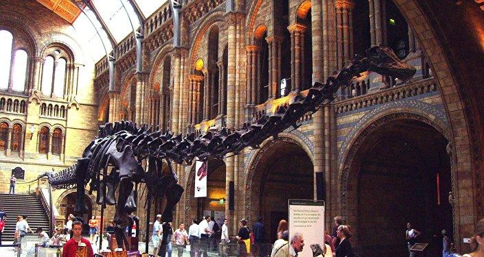 中国古生物学家的发现扭转进化论观点