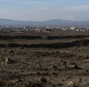 俄国防部:俄方促成1000多名支持伊朗武装人员撤离戈兰高地