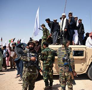 俄罗斯卫星通讯社获知美国与塔利班首轮谈判细节