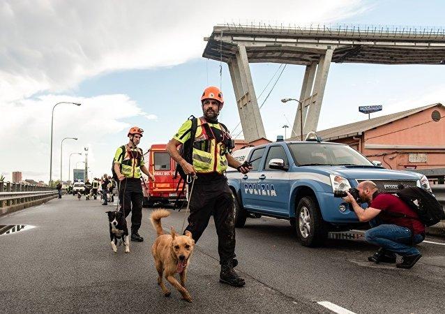 热那亚事故桥梁设计师的其他作品因结构问题面临坍塌威胁