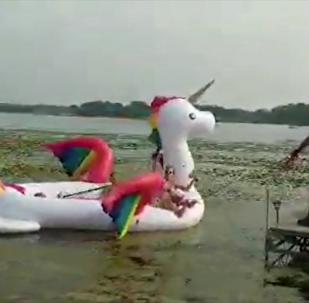 游客乘充气独角兽被困湖中 警员路过搭救
