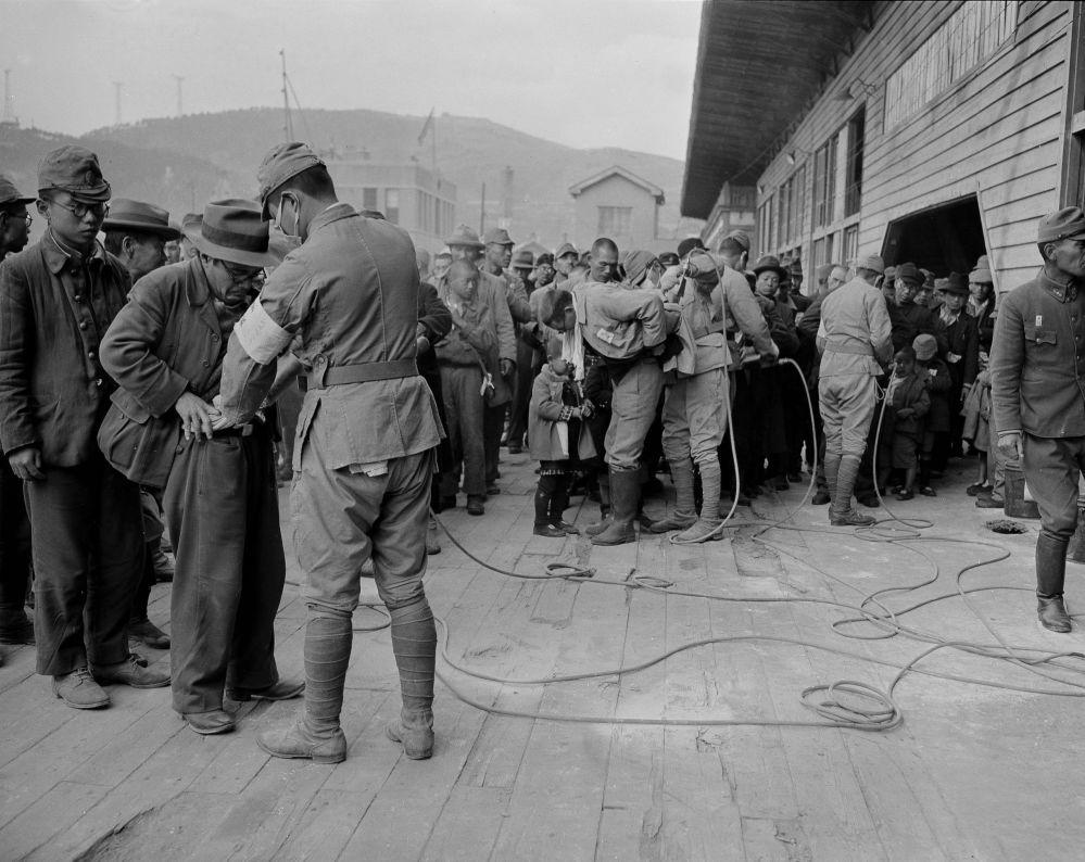 日本投降后从朝鲜遣返日本居民。