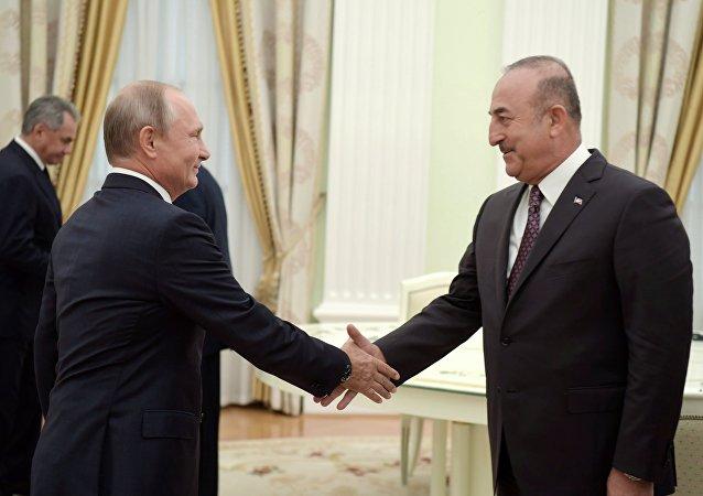 普京:由於同夥伴們相互協作 敘危機調解取得進展