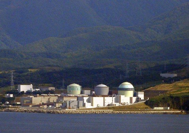 日本泊核能發電廠