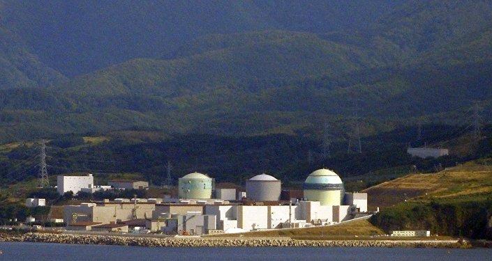 日本泊核能发电厂